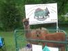 fun_day-alpacas-2-web